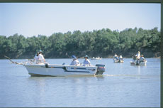 Barra Classic - Fishing in Northern Territory - courtesy of Tourism NT