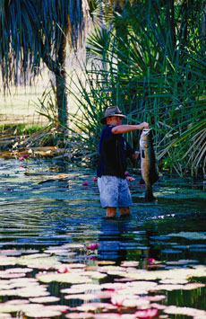 Fishing in Northern Territory - courtesy of Tourism NT